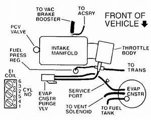1993 Buick Lesabre Vacuum Lines Diagram