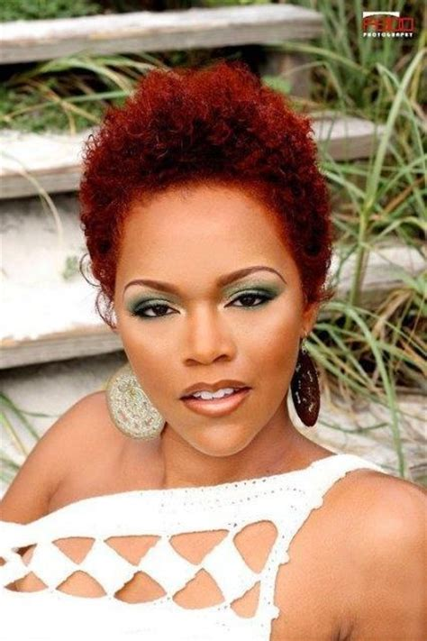 17 Best Images About Natural Hair Color On Pinterest