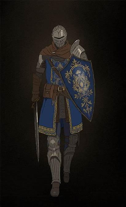 Souls Dark Knight Elite Gifs Armor Sun