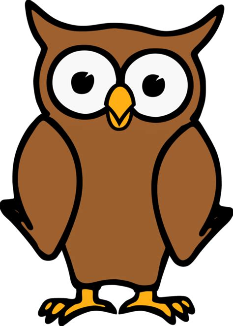 Animated Owl Wallpaper - owl animation drawing animated free commercial