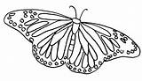 Butterfly Coloring Pages Painted Lady Butterflies Colors sketch template