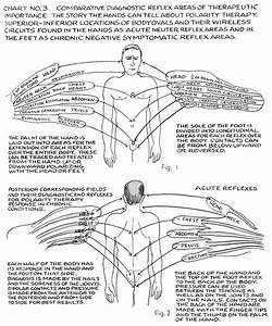 Polarity Therapy Volume 1  Book 3  Chart 03