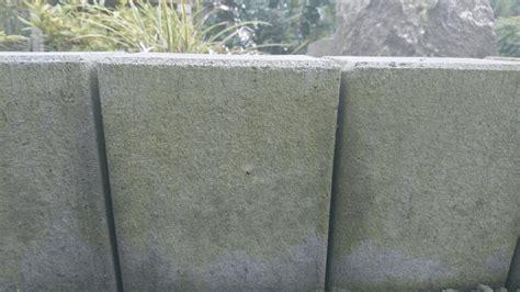 wie entfernt man den gruenbelag von steinen werweissde