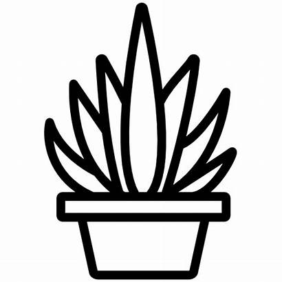 Succulent Outline Sticker Tall Stickers Cactus Decals