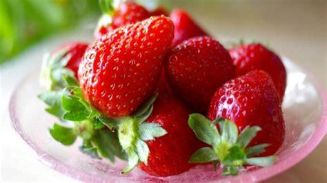 cuisine magazine comment semer des fraises fruits et légumes maison