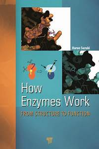 How Enzymes Work  From Structure To Function