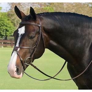 15 best High-End Horse Tack images on Pinterest | Horse ...