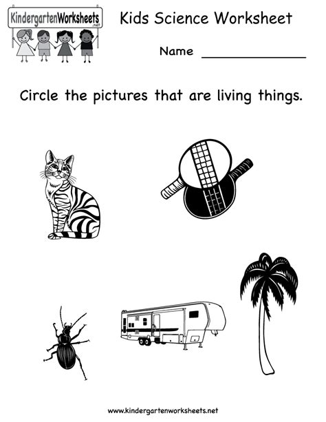 kindergarten science worksheet printable worksheets