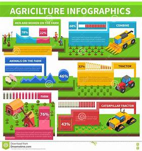 Agriculture Farming Infographic Isometric Poster Stock