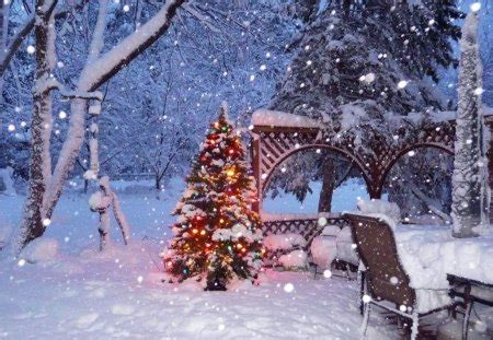 white christmas winter nature background wallpapers