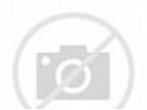 Prince William presents the 1st Battalion Irish Guards ...