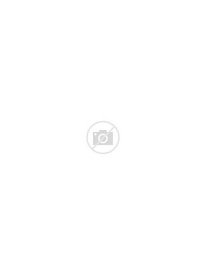 Leaf Svg Autumn Cut Supply Wishlist