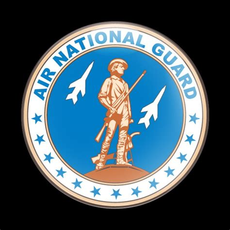 dome badge military  air national guard