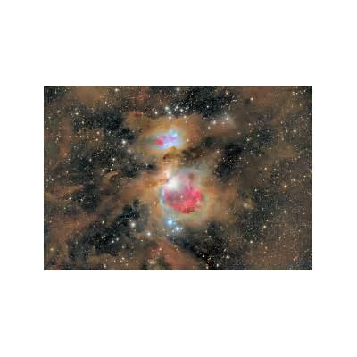 APOD: 2012 February 6 - Dust of the Orion Nebula