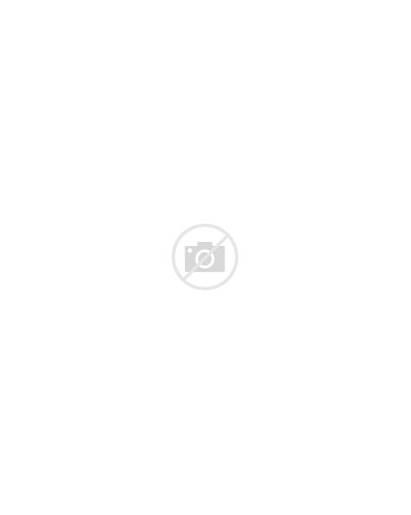 Fruit Snacks Shark Wrappers Printables Snack Mockup