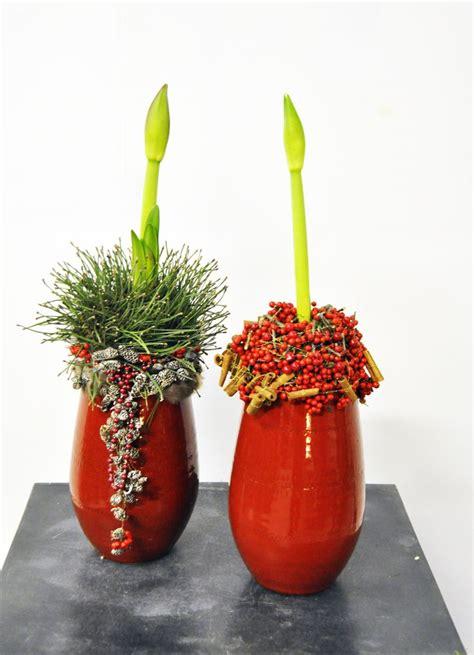 weihnachtsstern pflanze deko advent a dvm ben győr ideen f 252 r advent und weihnachten