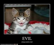 Funny Evil Cats