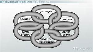 Chain Of Infection  Definition  U0026 Example