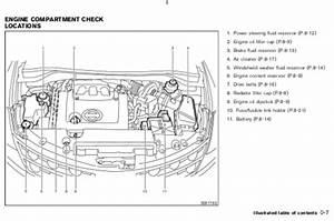 Download 2005 Nissan Murano Owner U2019s Manual    Zofti