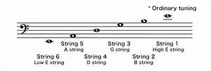 The Structure Of The Acoustic Guitar Uff1asix Strings  Each