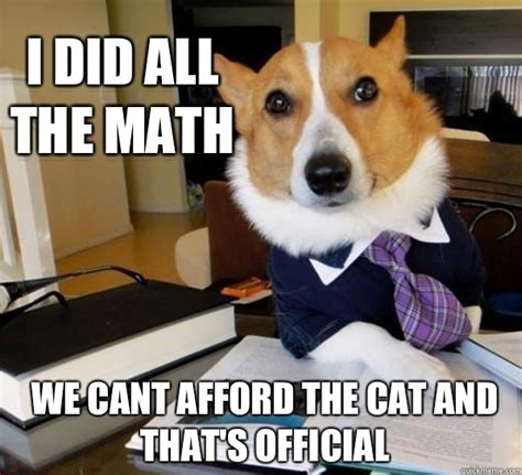 Dog Lawyer Meme - i did all the math we cant afford the cat and that s official lawyer dog quickmeme