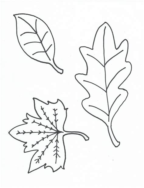 leaf coloring pages  print loving printable