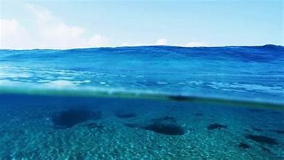 Amazing Awesome Underwater Animated Water Favim Ocean