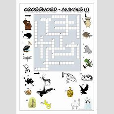 Crossword  Animals 3 (hard) Worksheet  Free Esl Printable Worksheets Made By Teachers