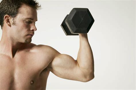 muscler interieur des bras 28 images programme de sport pour les vacances style muscler l