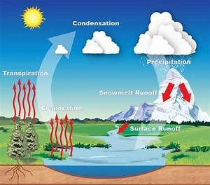 Mrs  Remis U0026 39  Earth Science Blog - 6th Grade  Atmosphere  Water Cycle