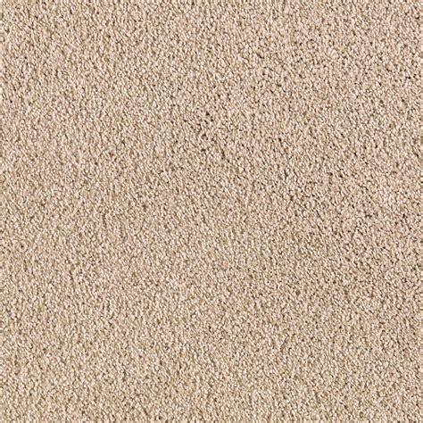 floor carpet texture rapid install durst ii color beach pebble texture 12 ft carpet 0612d 24 12 the home depot