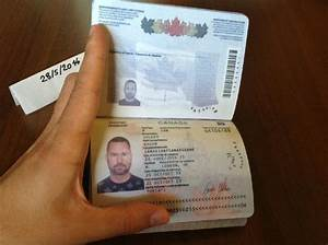 Novelty Drivers License - Bing images