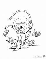 Coloring Monkey Banana Hellokids Gorilla Printable Funny Peel Monkeys Fish Cartoon Bestcoloringpagesforkids Looking Animal Pdf Shark Getcolorings Coloringpages101 Wonderful Coloringpagesonly sketch template