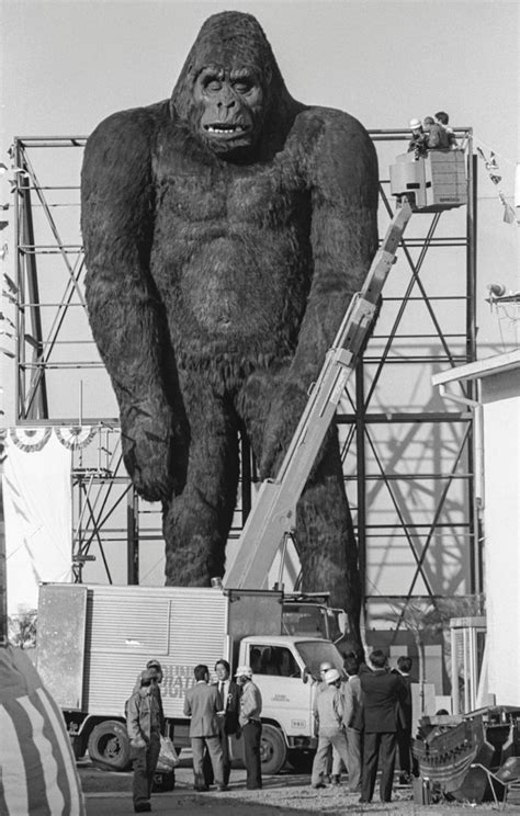 Jump to navigationjump to search. King Kong in Yokohama, 1986 - From the Archives - Stripes