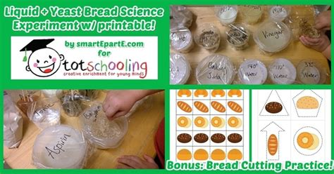 bread science experiment free printable bread cutting 276 | bread science cutting practice