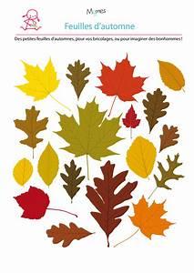 Feuilles D Automne à Imprimer : mod le de feuille d 39 automne ~ Nature-et-papiers.com Idées de Décoration