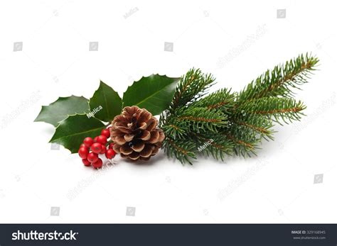 christmas decoration holly berry pine cone stock photo