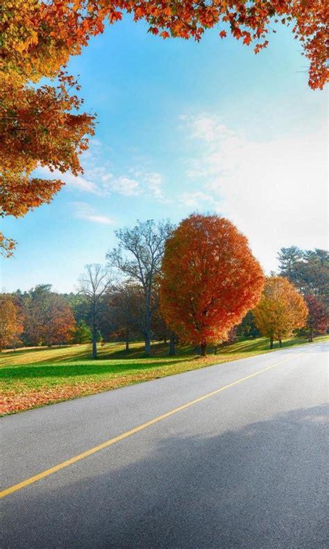 autumn hd wallpapers  nokia lumia