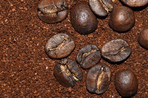 One cup wonder: How to reuse old coffee grounds   The Daily Coin