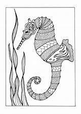 Coloring Adult Pages Adults Seahorse Sea Colorful Printable Favecrafts Books Horse Under Creatures Seahorses Templates Wildlife Fish sketch template