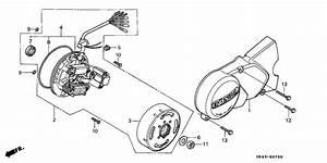 Left Crankcase Cover   Generator For 1986 Honda C50 C50