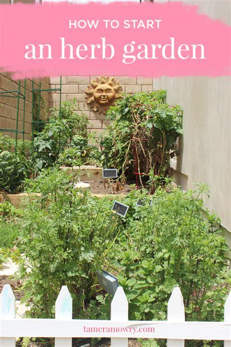 how to start an herb garden tamera mowry