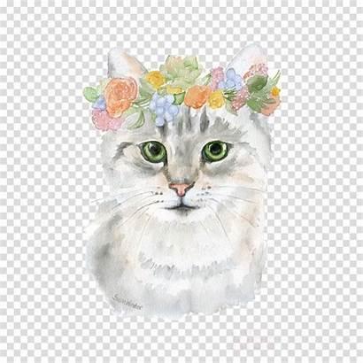 Cat Cartoon Transparent Watercolor Animals Clip Cats