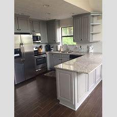 Grey Kitchen Remodel  Lake Living In 2019  Kitchen