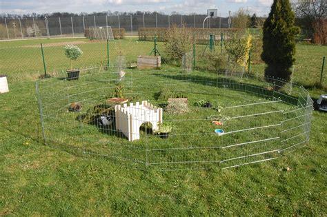 kaninchen auslauf selber bauen freilauf und auslauf