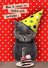 Homemade Birthday Cards With Cats