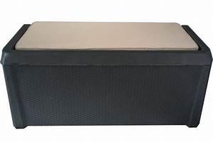 Box Für Sitzauflagen : toomax santorini xxl auflagenbox anthrazit kissen auflagen garten truhe box neu ~ Orissabook.com Haus und Dekorationen