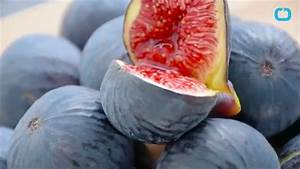 What You Didn U0026 39 T Know About Figs   You U0026 39 Re Eating Wasps