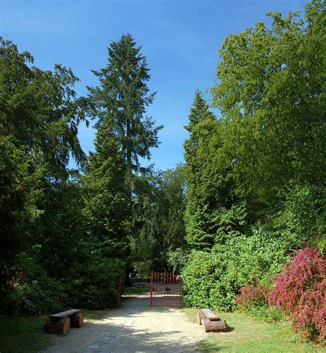 Botanischer Garten Eberswalde by Botanik In Berlin Und Brandenburg