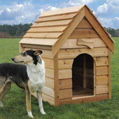 images   pallet dog house  pinterest dog